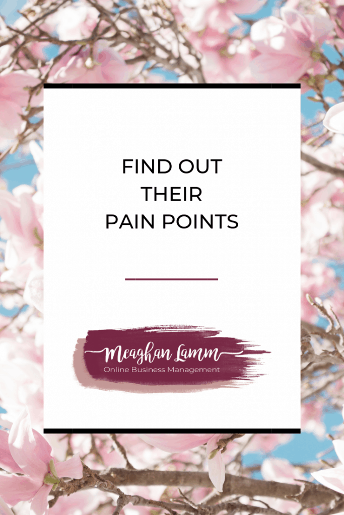 Find out their pain points https://www.meaghanlamm.com/interviewing-new-client/